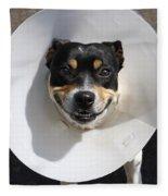 Smiling Dog Fleece Blanket