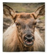 Smiling Elk Fleece Blanket