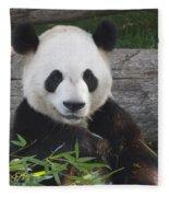 Smiling Giant Panda Fleece Blanket