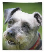 Smiling Schnauzer Fleece Blanket