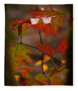 Smoky Mountain Color II Fleece Blanket