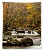 Smoky Mountain Gold II Fleece Blanket
