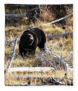 Snacking Bruin Fleece Blanket