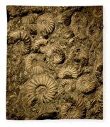 Snail Fossil Fleece Blanket