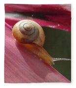Snail In Motion Fleece Blanket