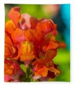 Snapdragon Flower Blurred Background Fleece Blanket
