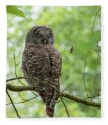 Snooze Time - Owl Fleece Blanket