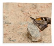 Snout Butterfly  Fleece Blanket