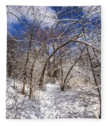 Snow Arches Fleece Blanket