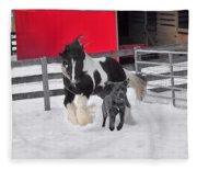 Snow Buddies Fleece Blanket