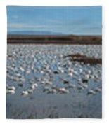 Snow Geese Bosque Fleece Blanket