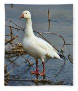 Snow Goose Fleece Blanket