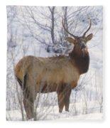 Snow In The Face  Fleece Blanket