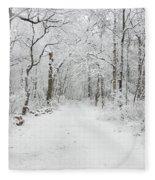 Snow In The Park Fleece Blanket