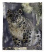 Snow Leopard 1 Fleece Blanket