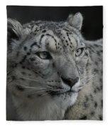 Snow Leopard 15 Fleece Blanket