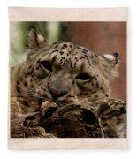 Snow Leopard 17 Fleece Blanket
