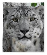 Snow Leopard 5 Fleece Blanket