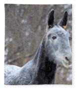 Snow Mule Fleece Blanket