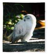 Snow Owl  Fleece Blanket