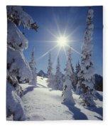 1m4882-snow Laden Tree Sunburst Fleece Blanket