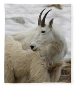 Snow White Mountain Goat Fleece Blanket