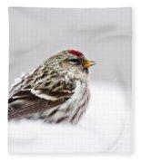 Snowy Common Redpoll Fleece Blanket