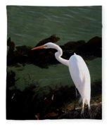 Great Egret Monterey Bay California  By Pat Hathaway Fleece Blanket