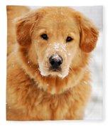 Snowy Golden Retriever Fleece Blanket
