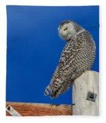 Snowy Owl Fleece Blanket