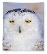 Snowy Owl Portrait Fleece Blanket
