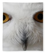 Snowy Owl Stare Fleece Blanket