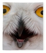 Snowy Owl Up Close And Personal Fleece Blanket