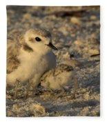Snowy Plover Transforms Into A Spiderbird 4 Fleece Blanket