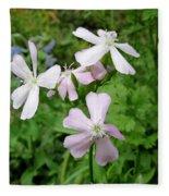 Soapwort Flowers Fleece Blanket