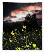 Socorro Sunset Fleece Blanket