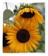 Soft Colors Sunflowers Fleece Blanket