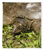 Florida Soft Shelled Turtle - Apalone Ferox Fleece Blanket