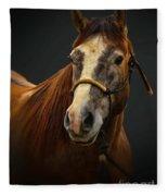 Soft Focus Horse Fleece Blanket