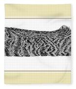 Soft Kitty Warm Kitty Fleece Blanket