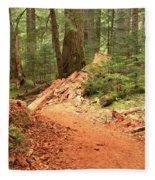 Soft Light Along The Cheakamus Lake Trail Fleece Blanket