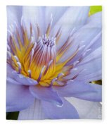Soft Mauve Waterlily Fleece Blanket