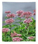 Softest Pink Fleece Blanket