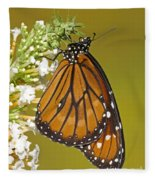 Soldier Butterfly Danaus Eresimus Fleece Blanket