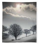 Solitude Of Coldness Fleece Blanket
