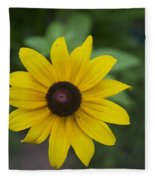 Solo Black-eye Susan Fleece Blanket