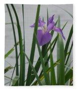 Solo Iris Fleece Blanket