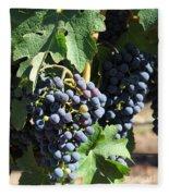 Sonoma Vineyards In The Sonoma California Wine Country 5d24630 Vertical Fleece Blanket