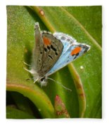 Sonoran Blue Fleece Blanket