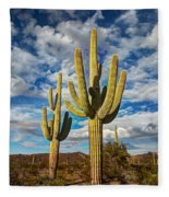 Sonoran Desert Beauty Fleece Blanket